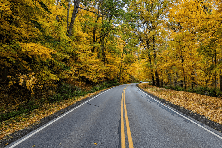 Two lane road in autumn