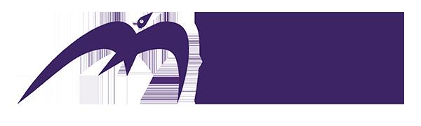 Maximum Performance logo