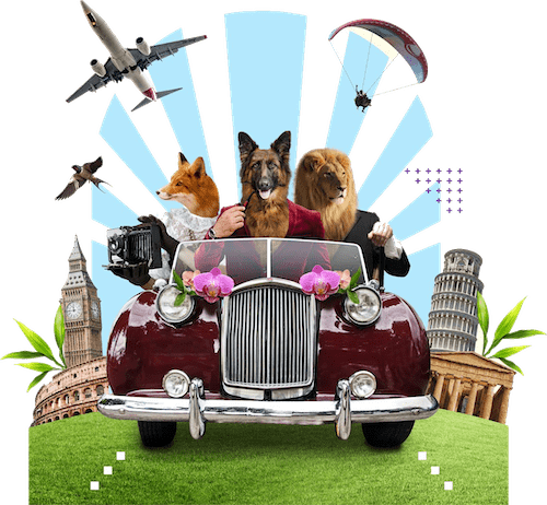 A dog, lion and fox in a car dressed as business people