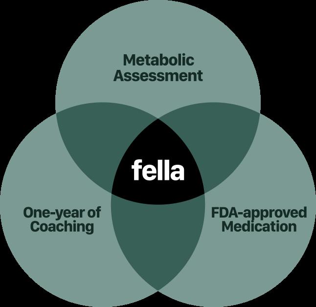 Fellla Venn Diagram