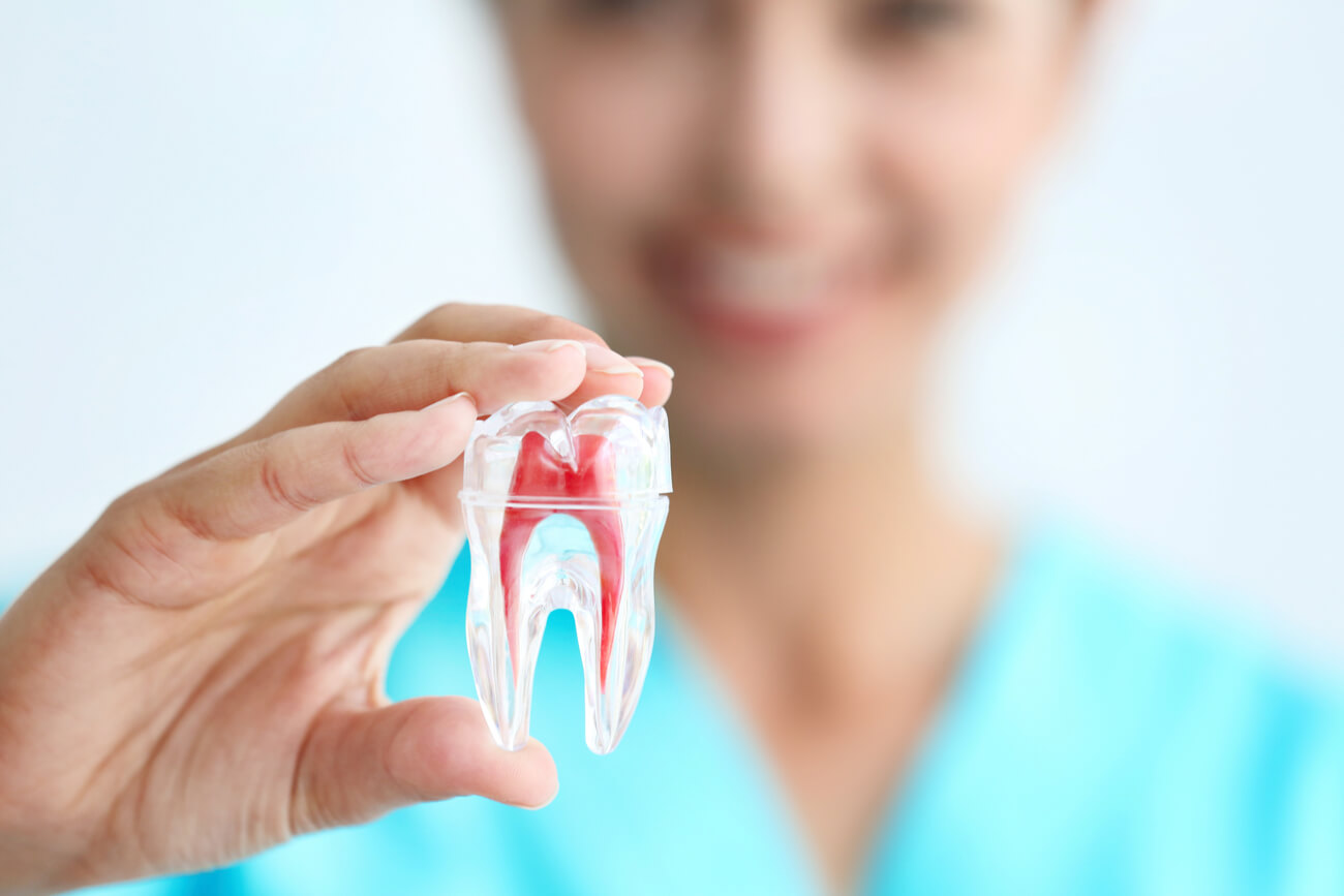 Woman holding false tooth for root canal example