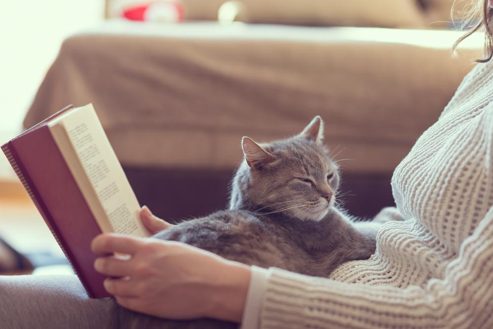 Skaitymas su kate