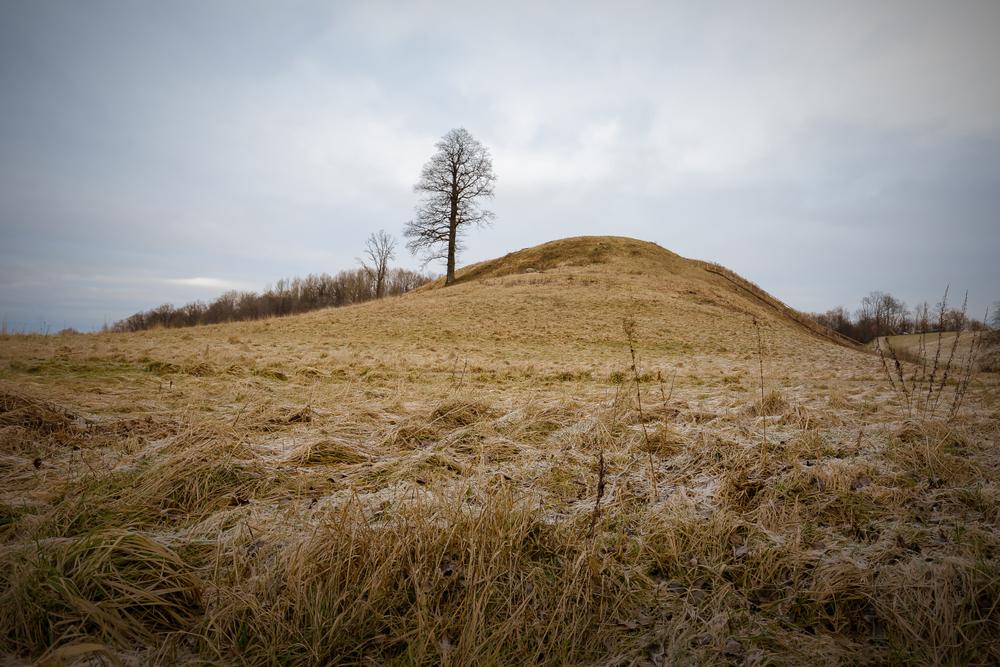 Tundra Lietuvoje