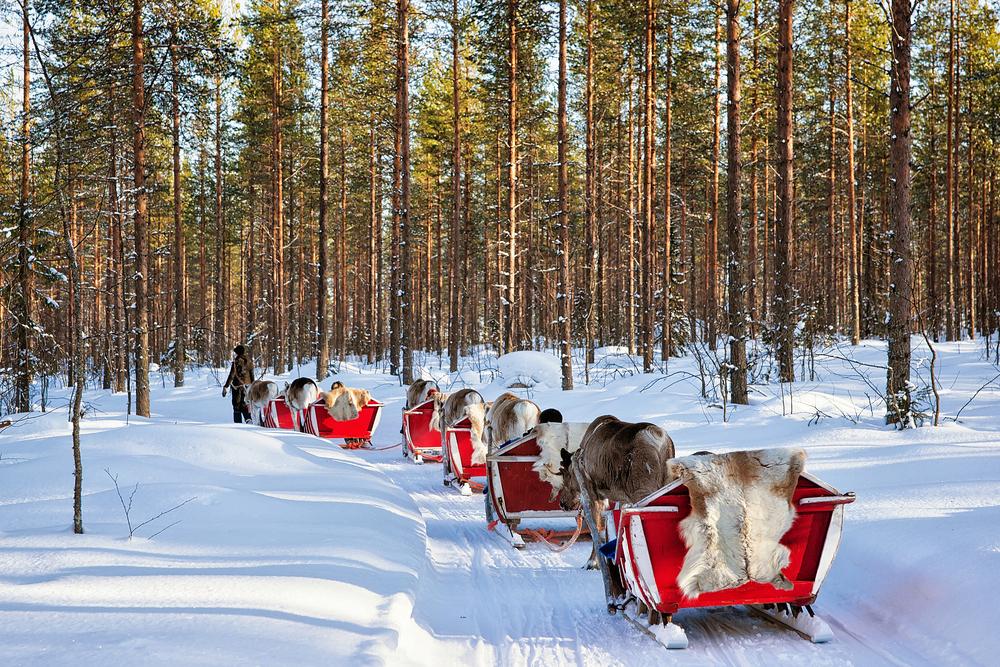 Kelionė pas Kalėdų senelį