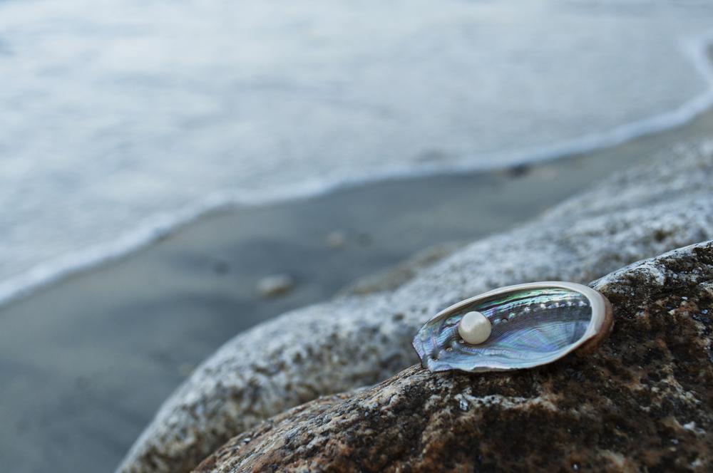 Natūralus perlas gamtoje