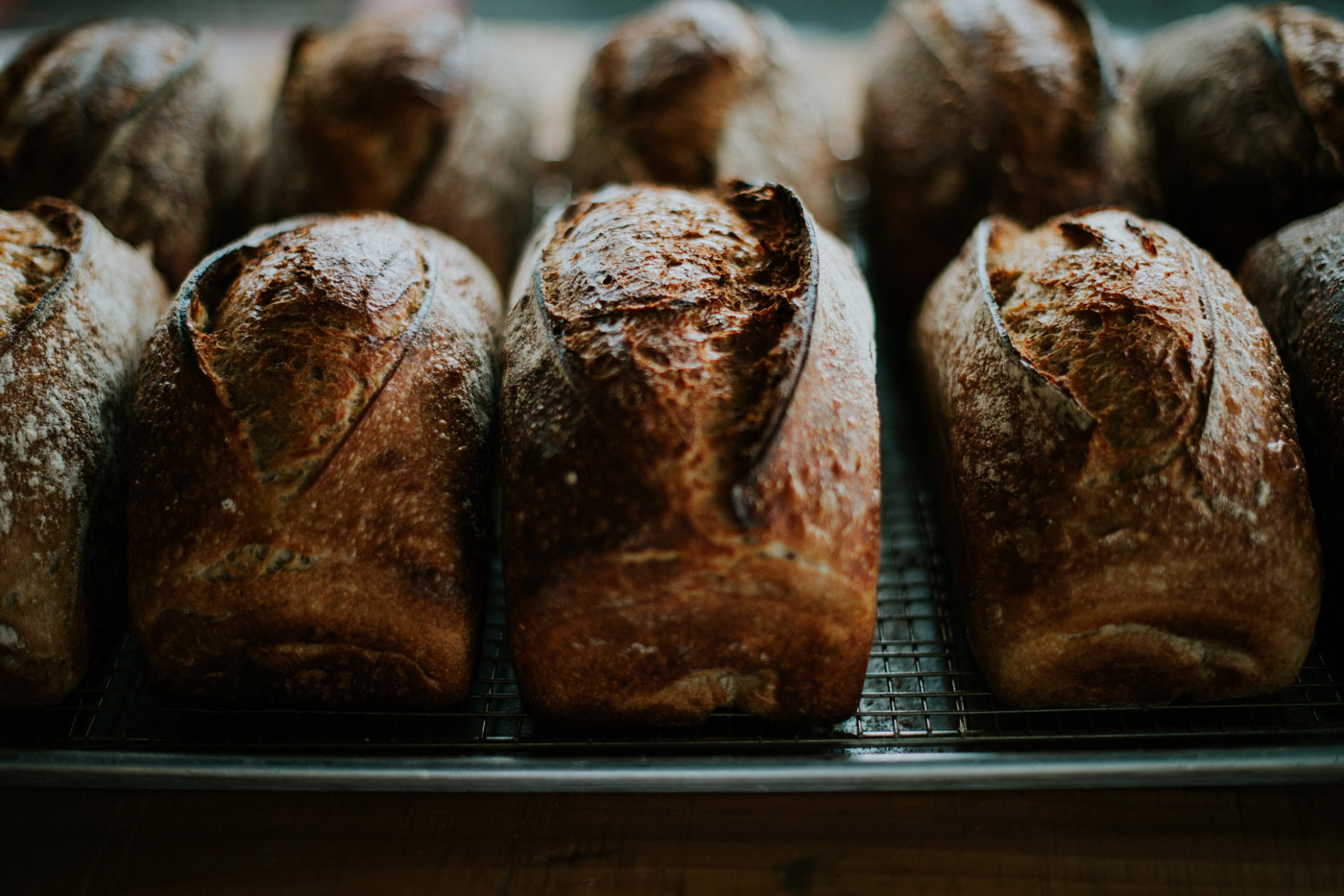 Line of loaves close up