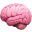 An icon representing a brain