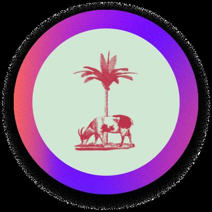 Chubby's Jamaican kitchen logo