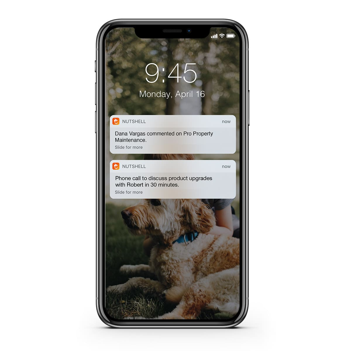 Nutshell iphone notifiction from team member