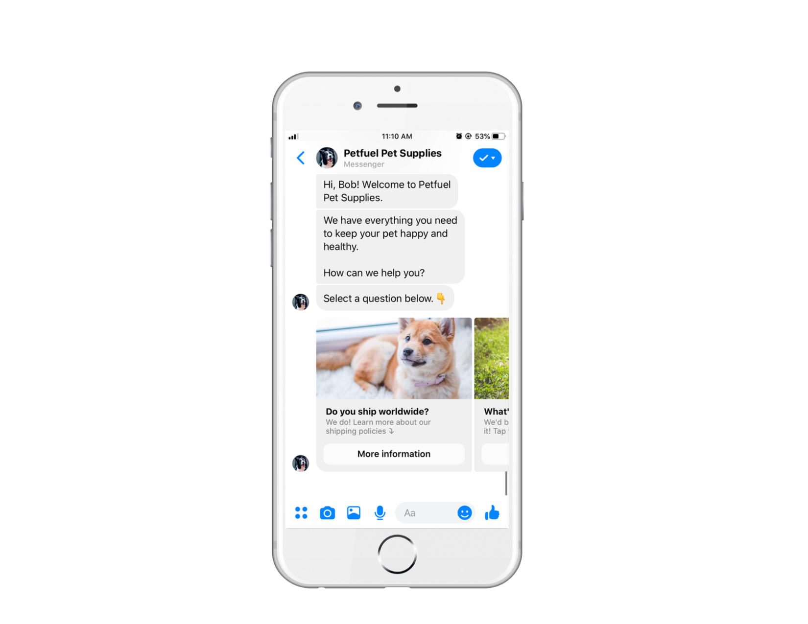 Chatbot answering basic FAQs