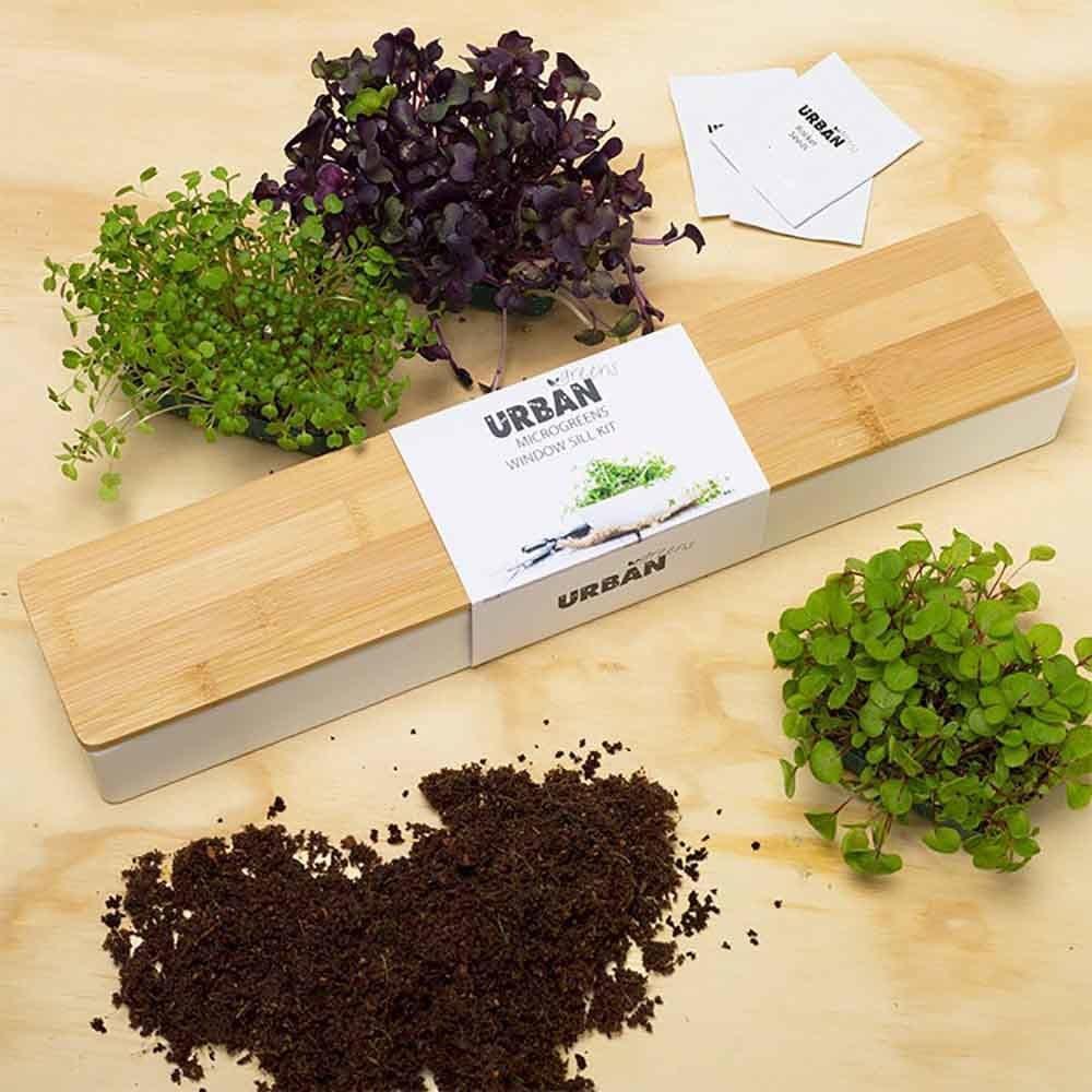urban-greens-green-growing-kit-plant-flora-and-fauna