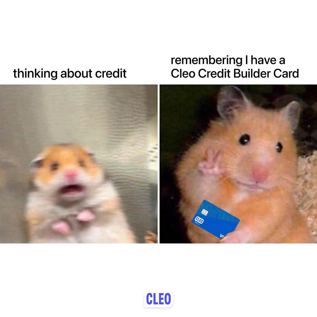 STOP SCROLLING. We need you to know two things: 1) this card isn't tiny the hamster is just huge. 2) no actually that is all.
