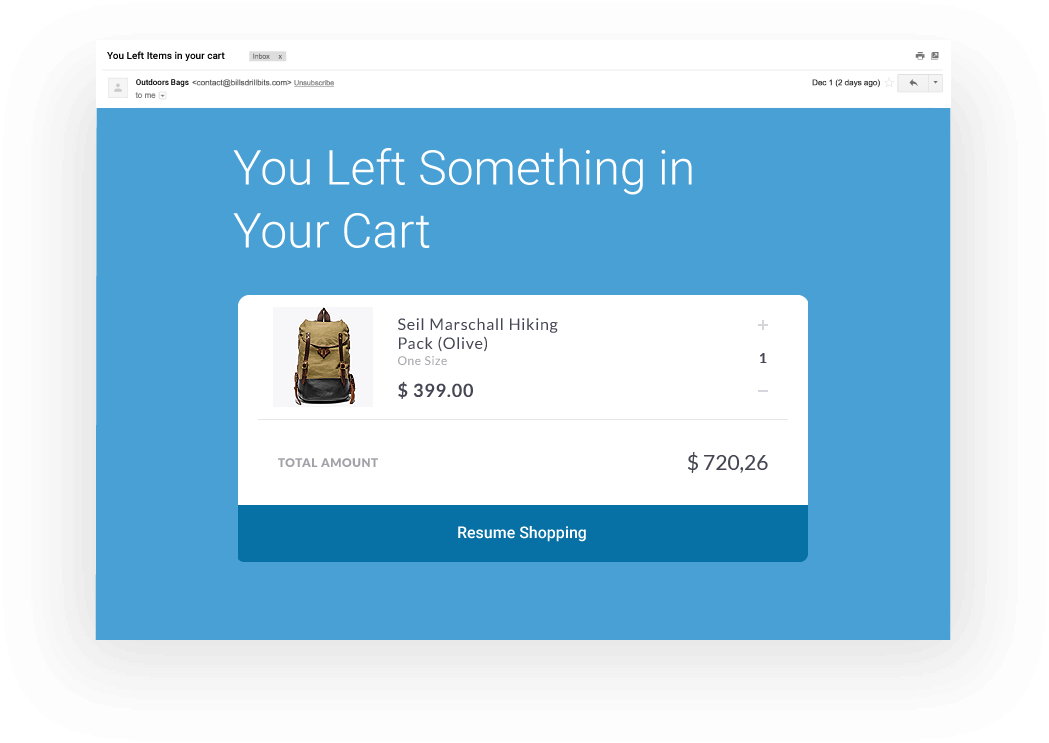 Cart Abondon Email Example