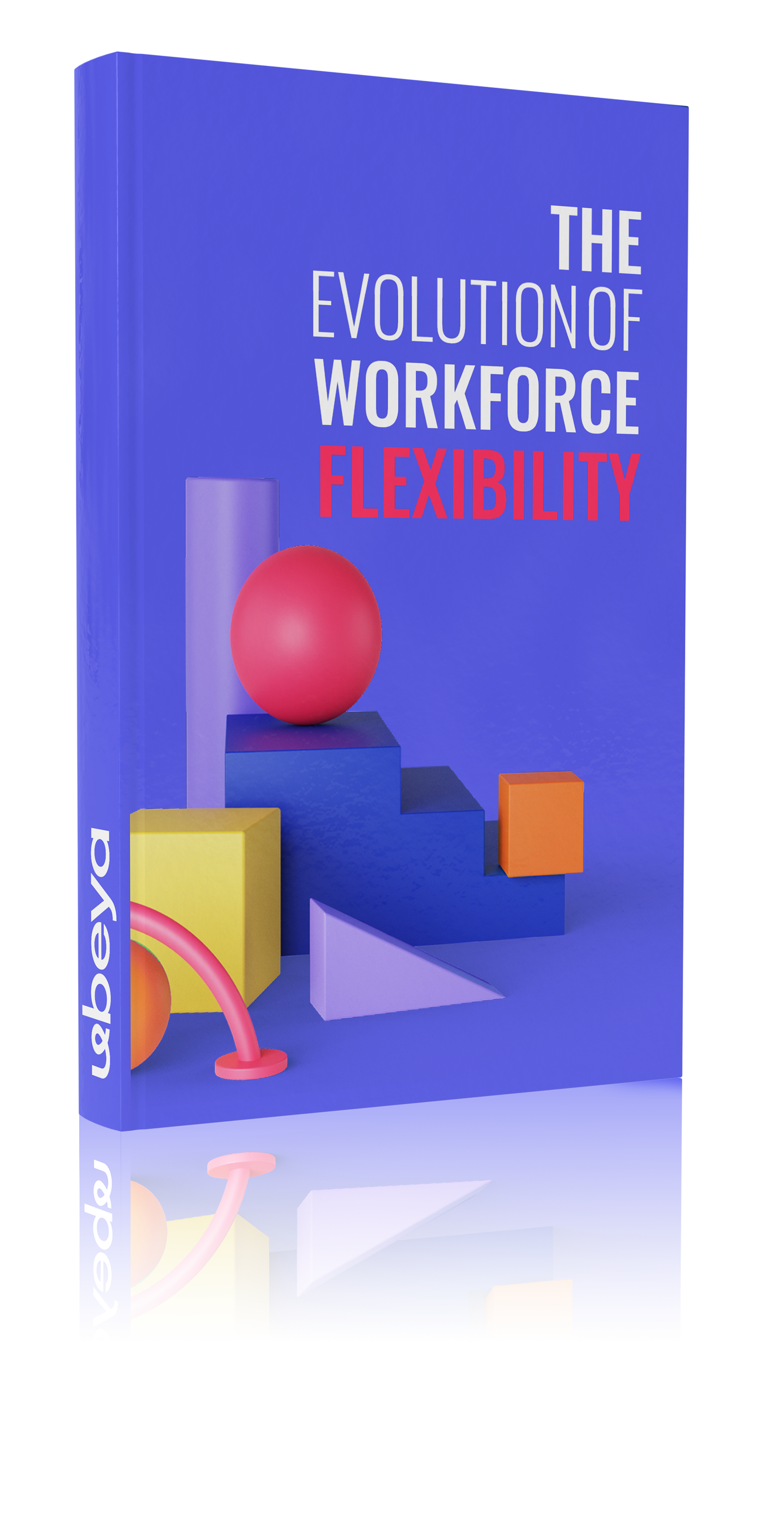 The Evolution of Workforce Flexibility Book Cover Image