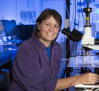 Cather Simpson: quantitative immunity testing