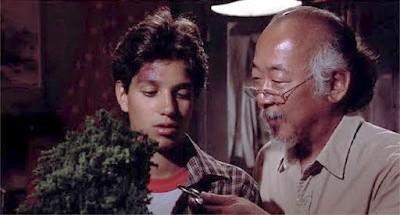 Mr. Miyagi trains Daniel in the art of bonsai. Still from the film The Karate Kid.