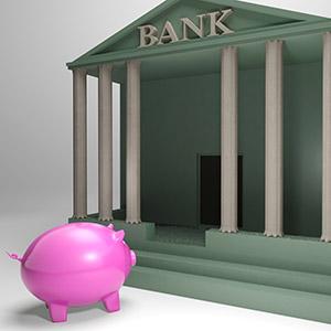 банка или небанкова институция