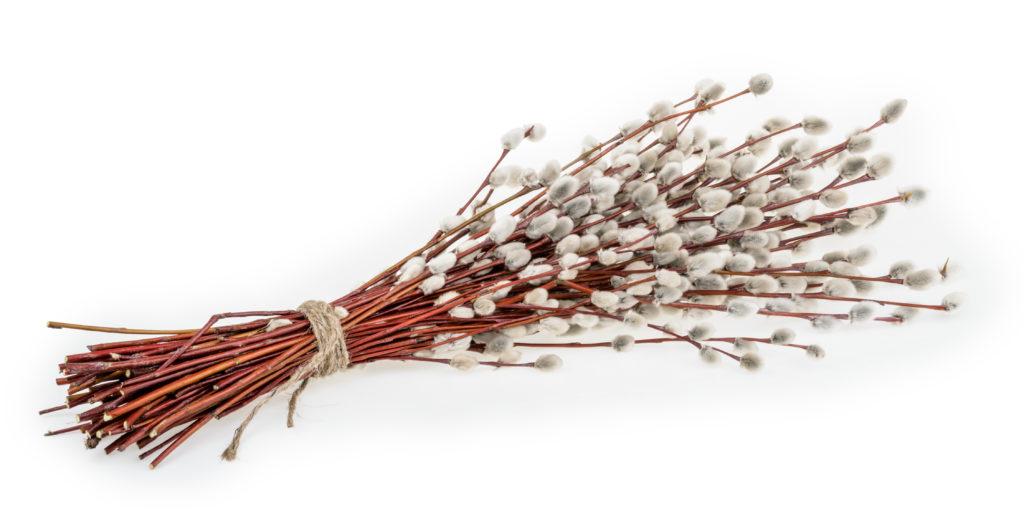 Снопче от върбови клонки за Цветница