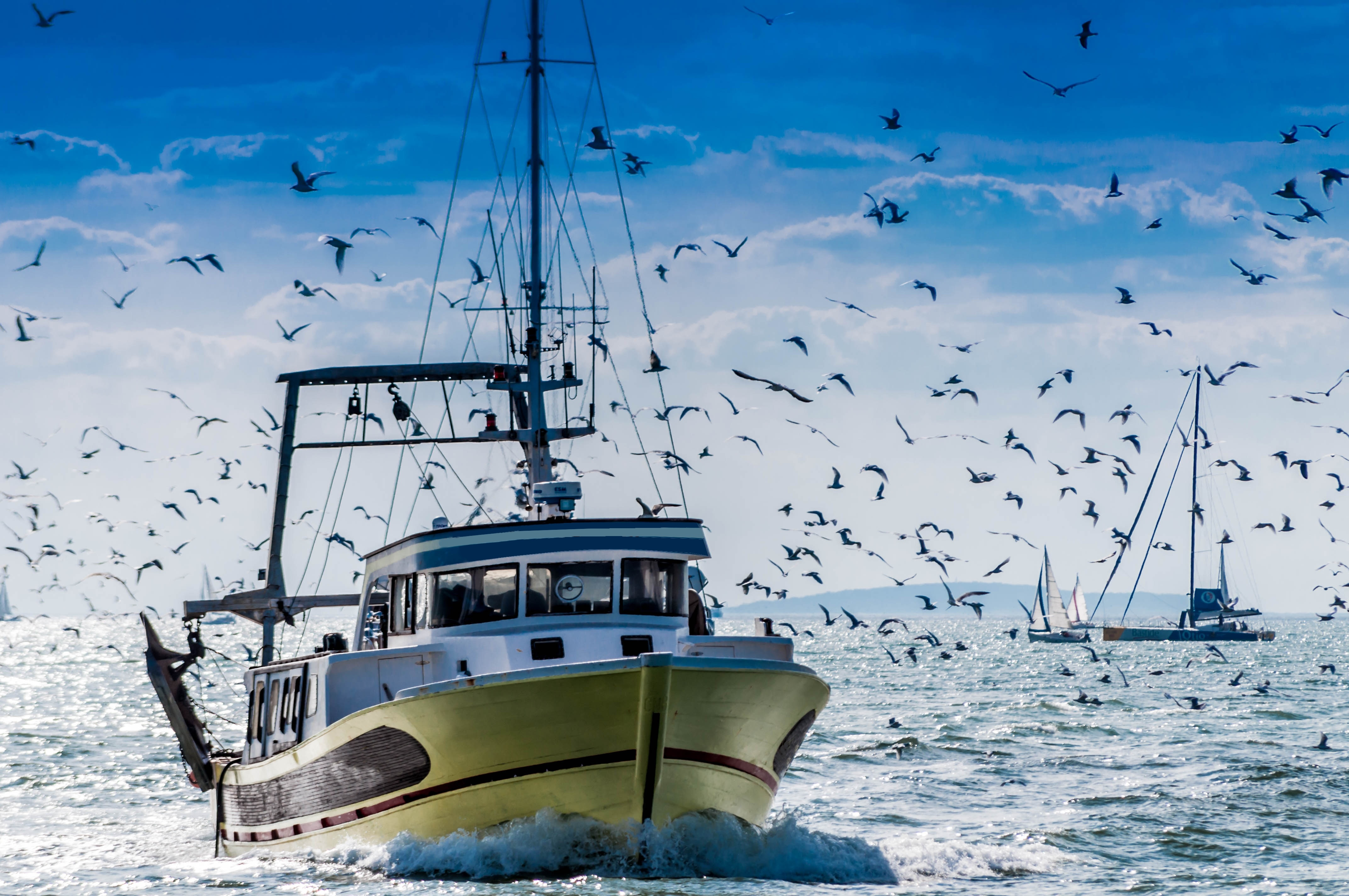 Рибарска лодка в море