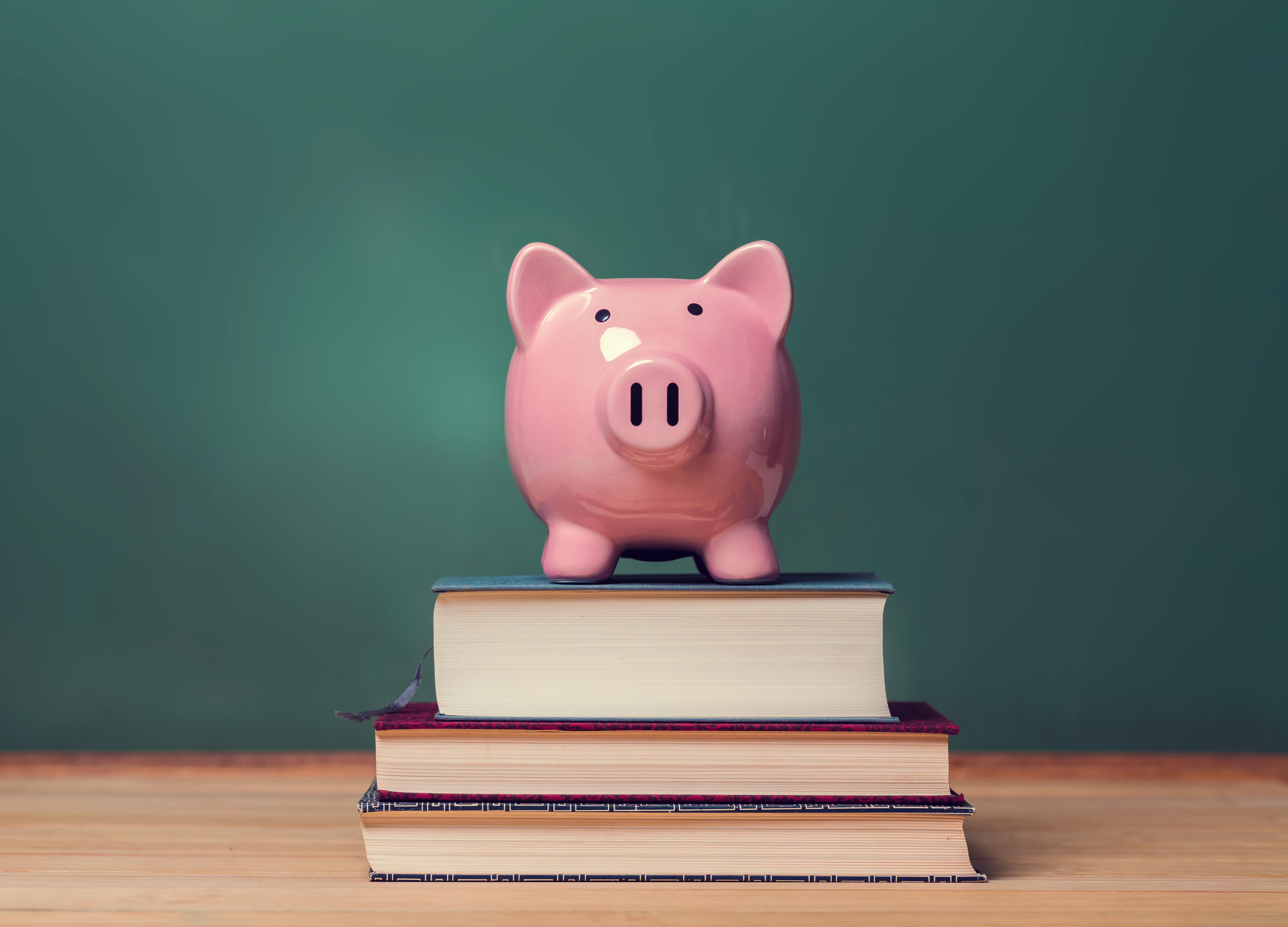 Прасе-касичка, поставено върху книги за лични финанси
