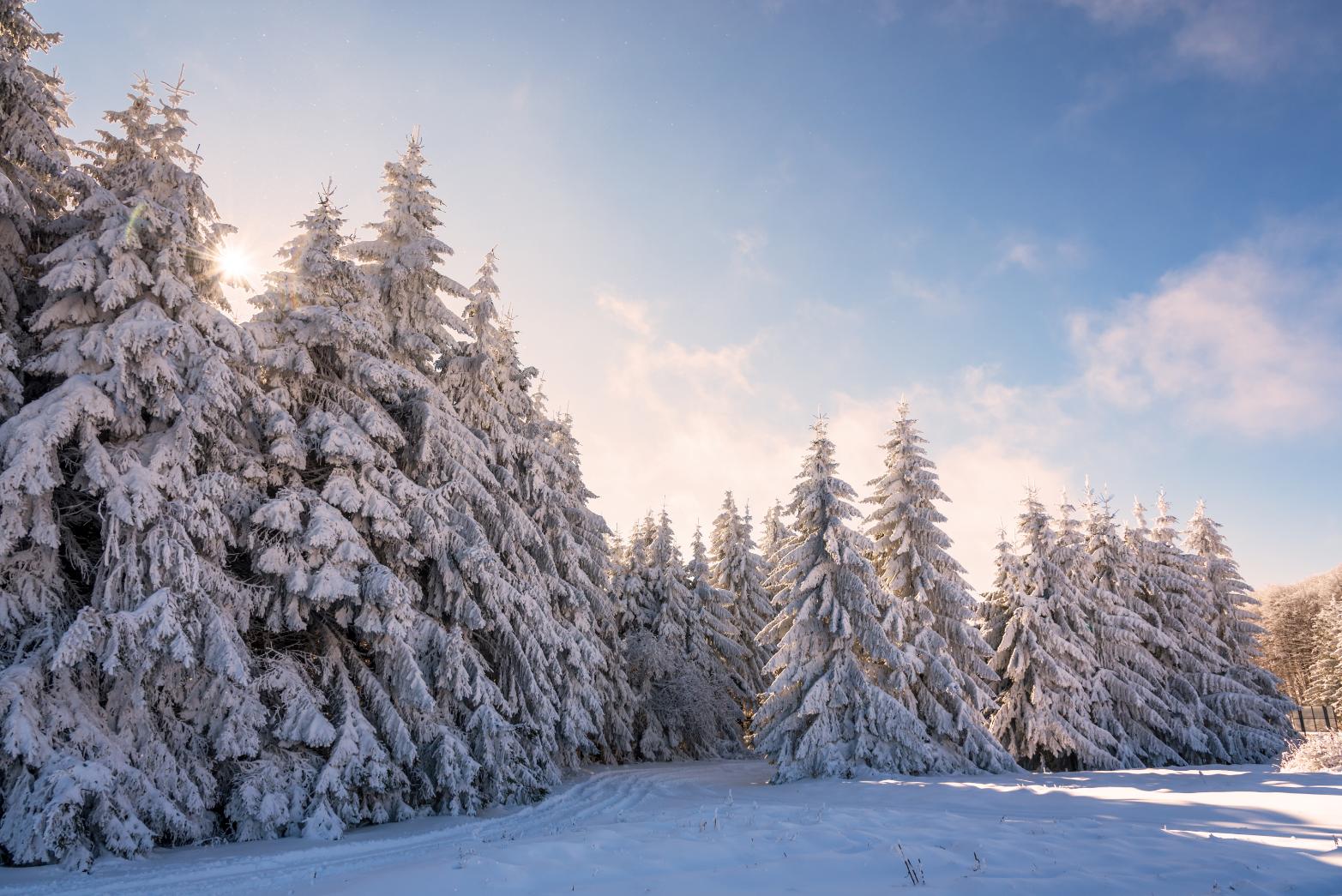 10 красиви места през зимата, които да видим в България