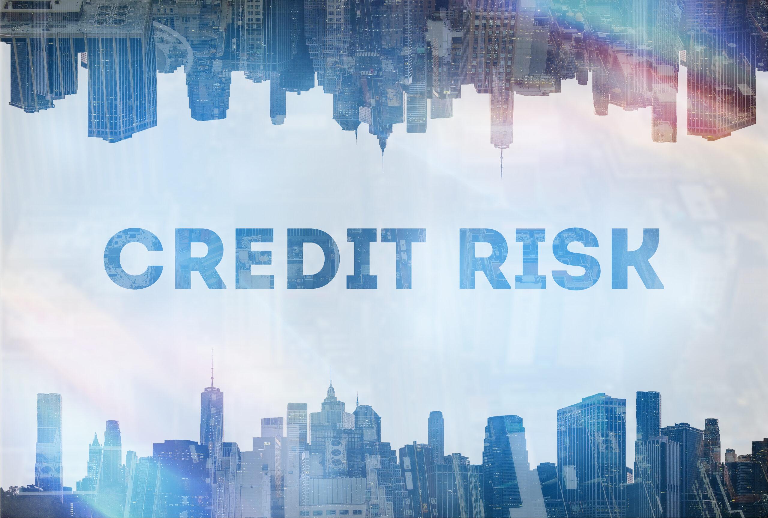 Какво е кредитен риск?