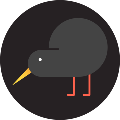 Small picture of a kiwi bird