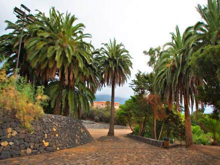 Renovamos el parque El Pinar, en La Victoria, Tenerife
