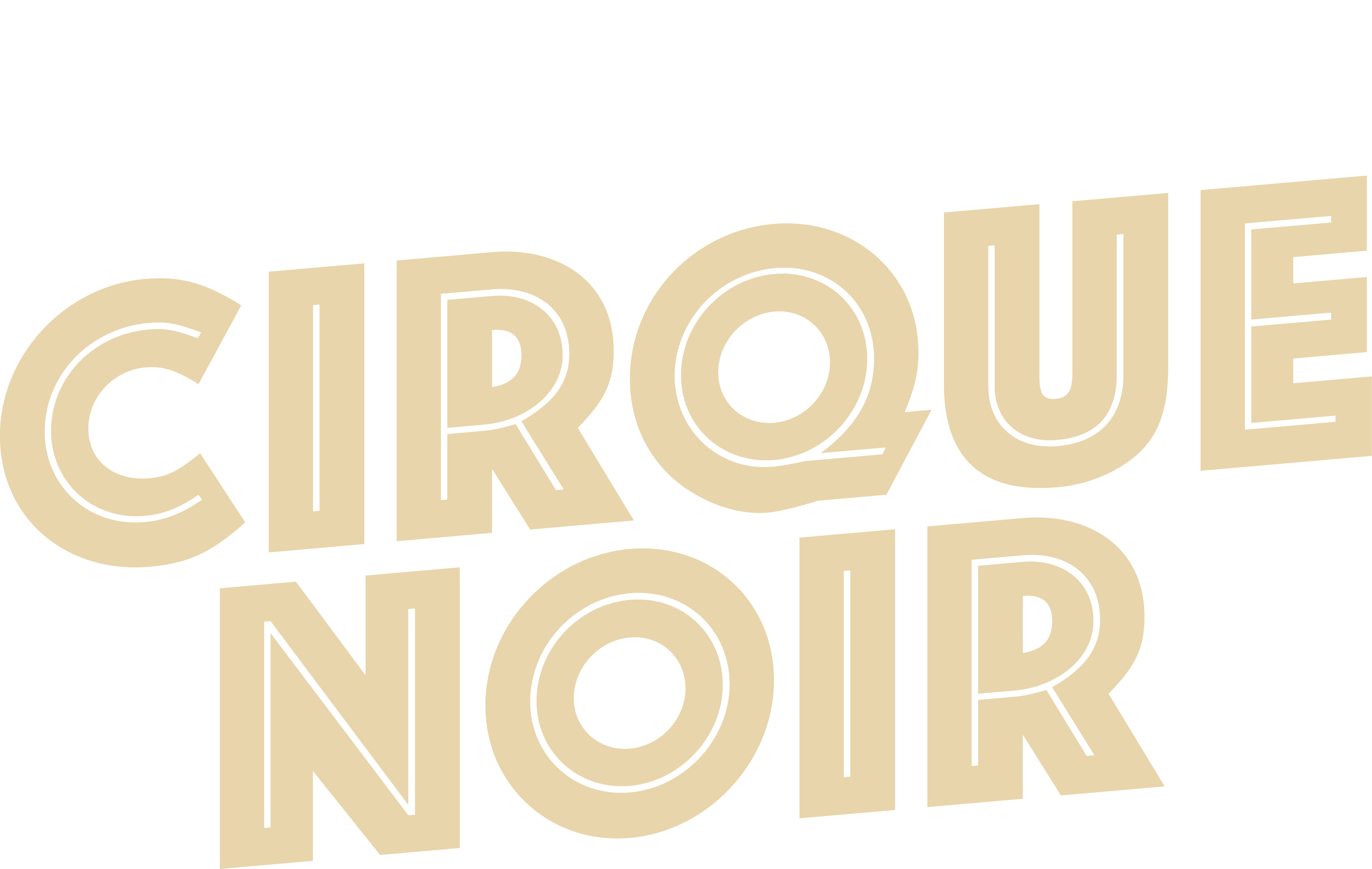 Dumtectives logo