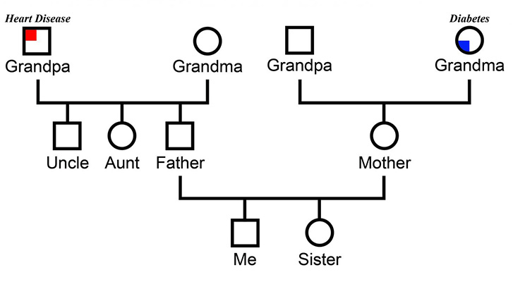 family structure chart