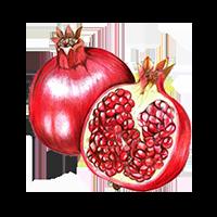 Pomegranate (Ellagic Acid)