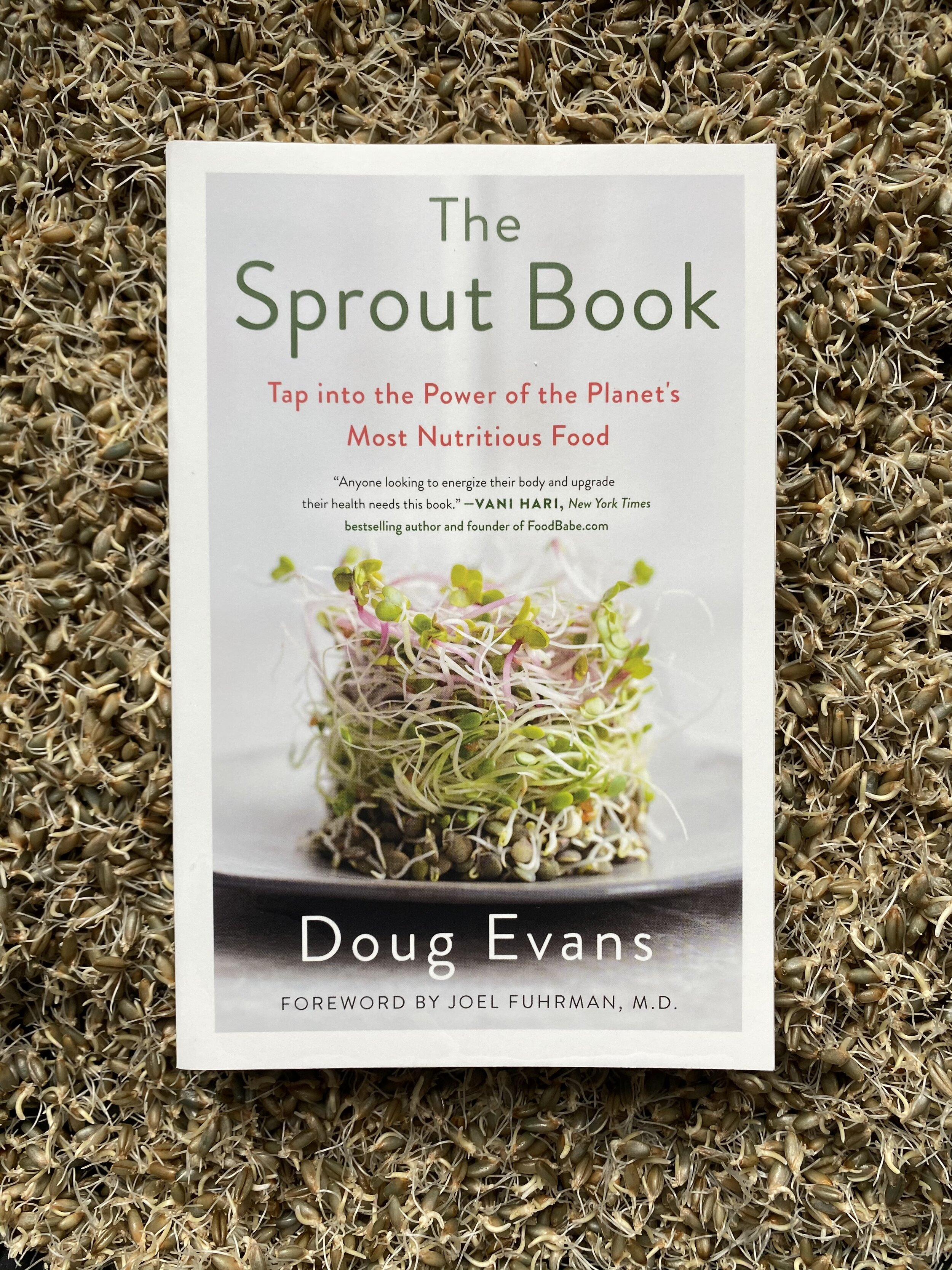 The Sprout Book by Doug Evans