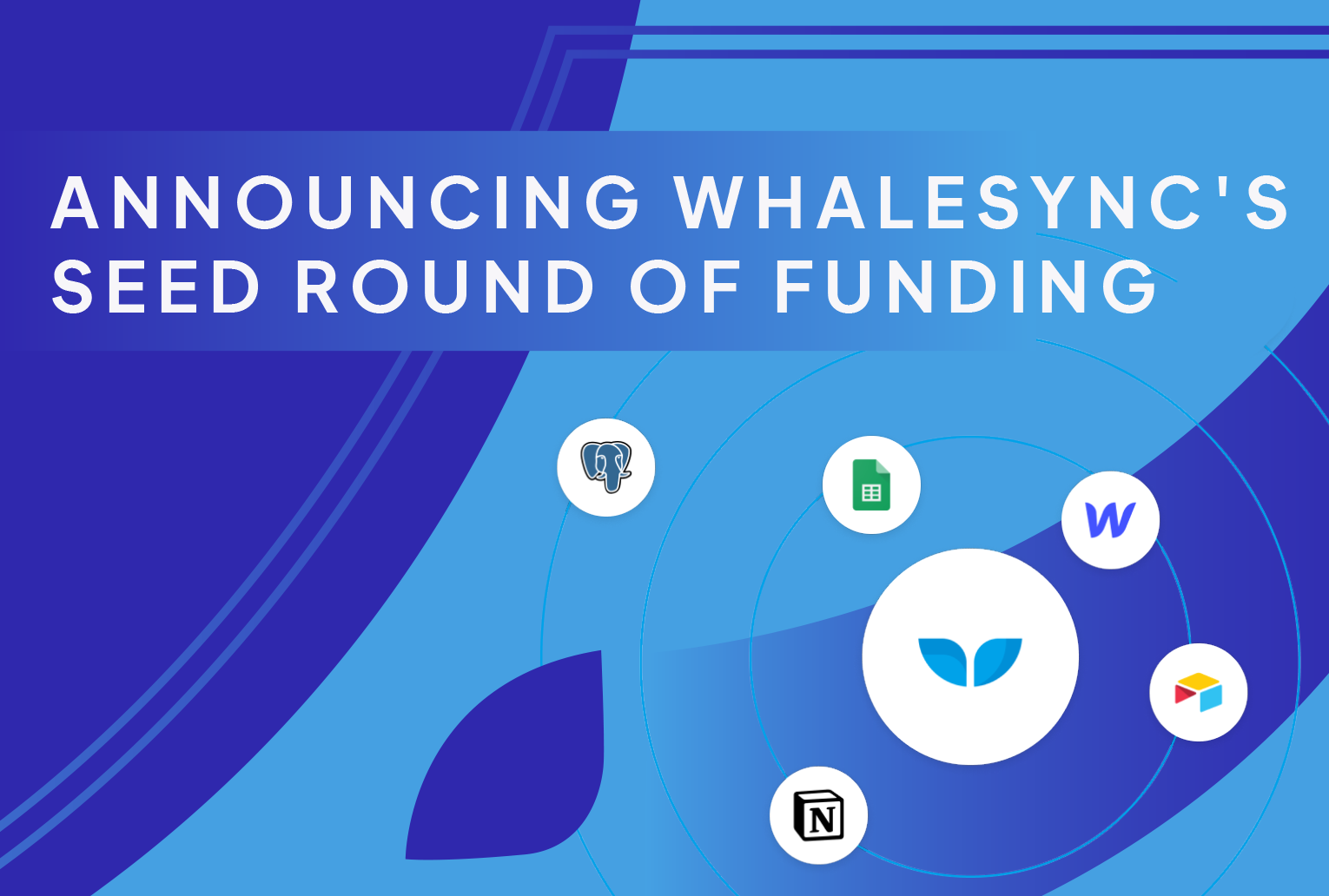 Announcing Whalesync's Seed Round