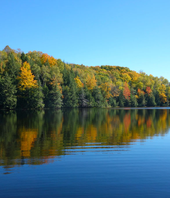 picture of a lake