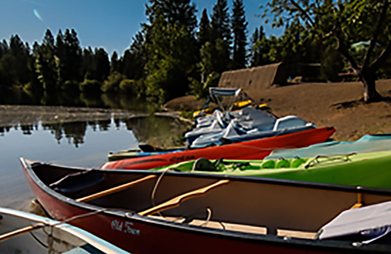 Mill Pond Boats