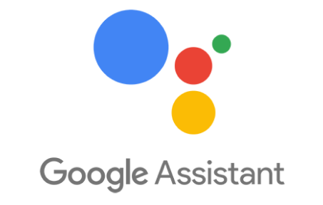 Google Assistant experts