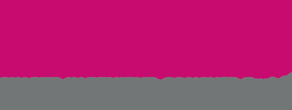 Singer Ingenieur Consult Logo