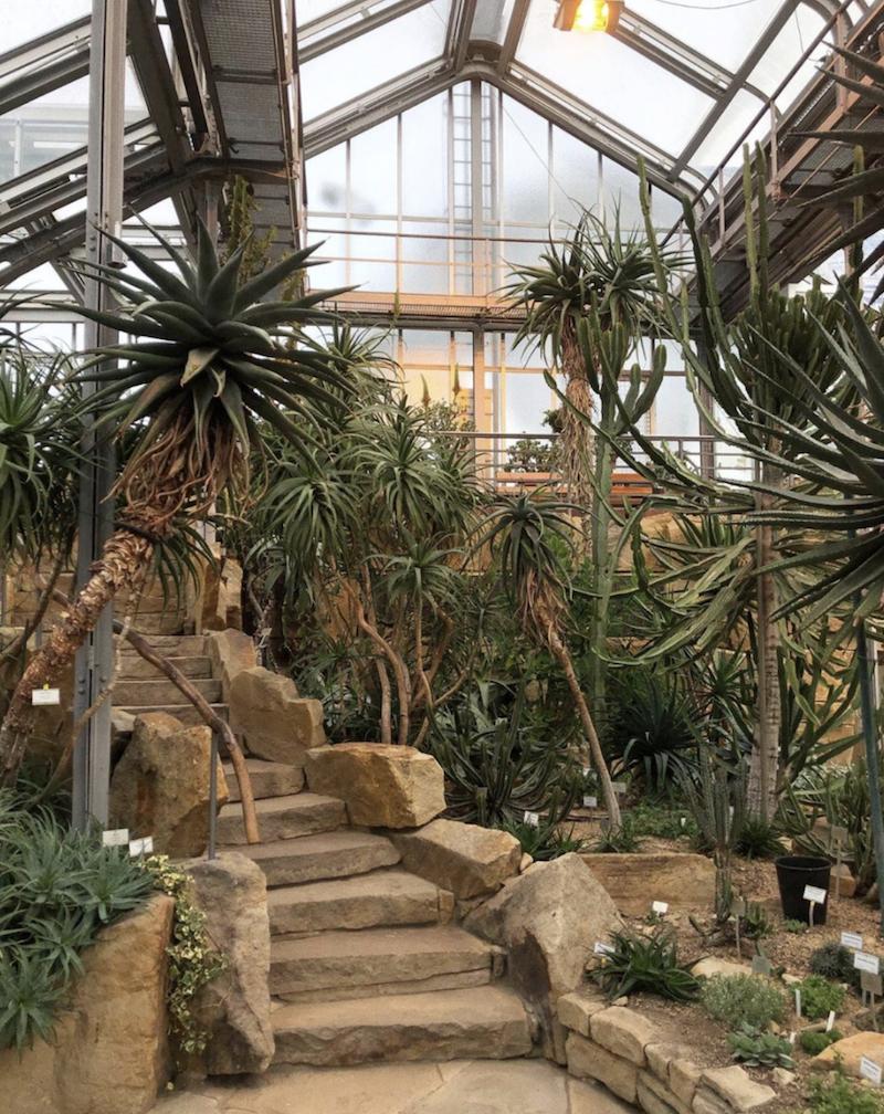 Berlin Botanical Garden take photos and best portraits in Berlin