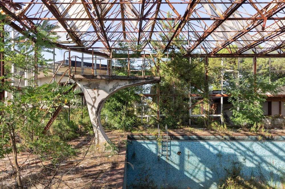 An abandoned indoor swimming pool, in which plants and trees have grown over time.