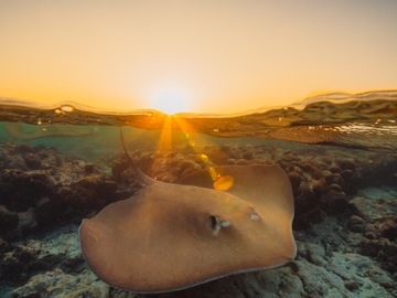 Sea photography by Andy Troy, photographer on Beazy