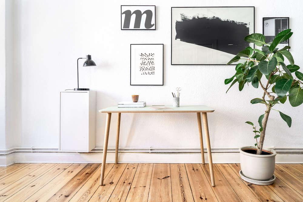 Ugo Design - Product and lifestyle photoshoot