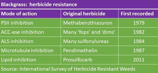 Blackgrass resistance