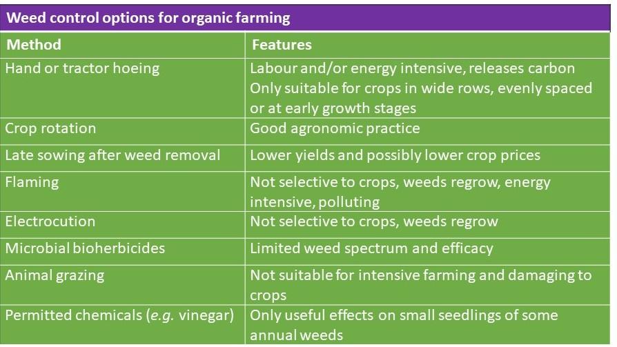 Organic weed control methods