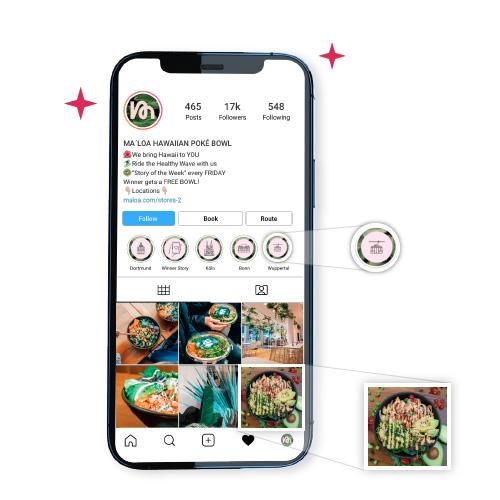 Instagram Feed und Instagram Bio