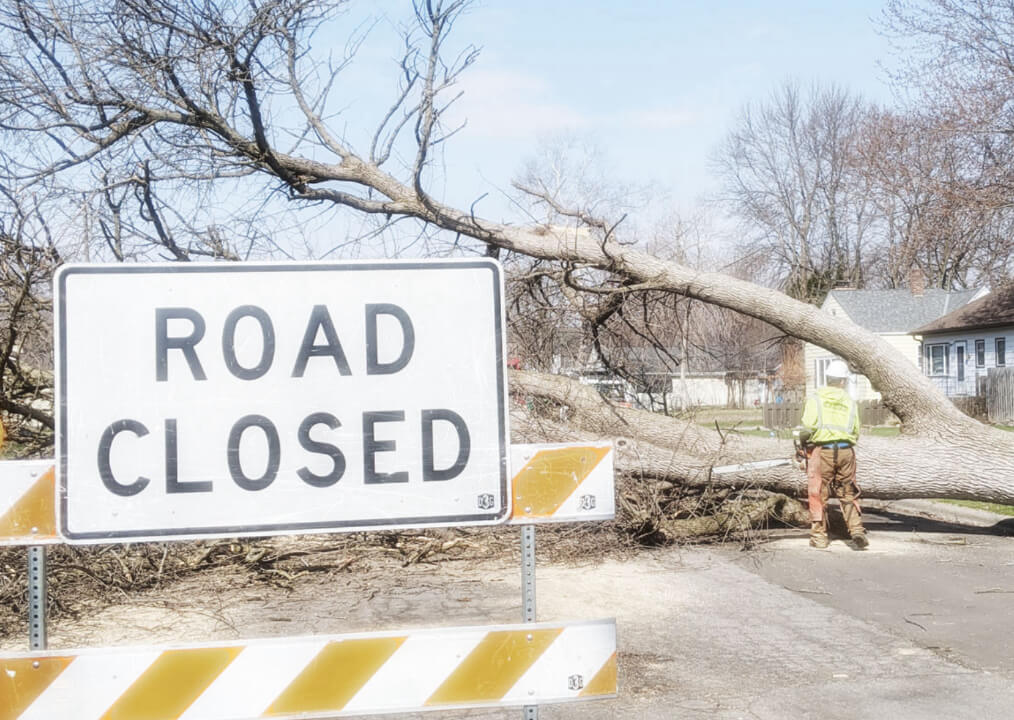 Road Closed sign with large tree fallen in the middle of the road & TreeStory contractor working to remove tree after a storm
