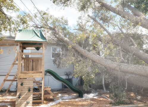 Large fallen tree rests on roof of home with playset to the left. TreeStory handles clean up after severe storm damage in MN