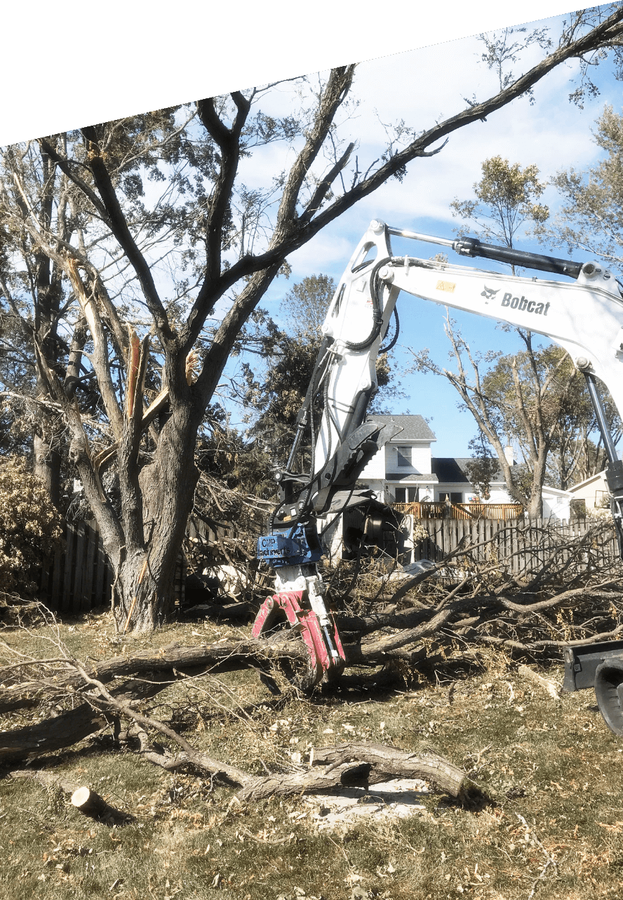 Fallen trees, likely from storm damage, being picked up & sorted by excavator with MP Rotating Bypass Grapple attachment