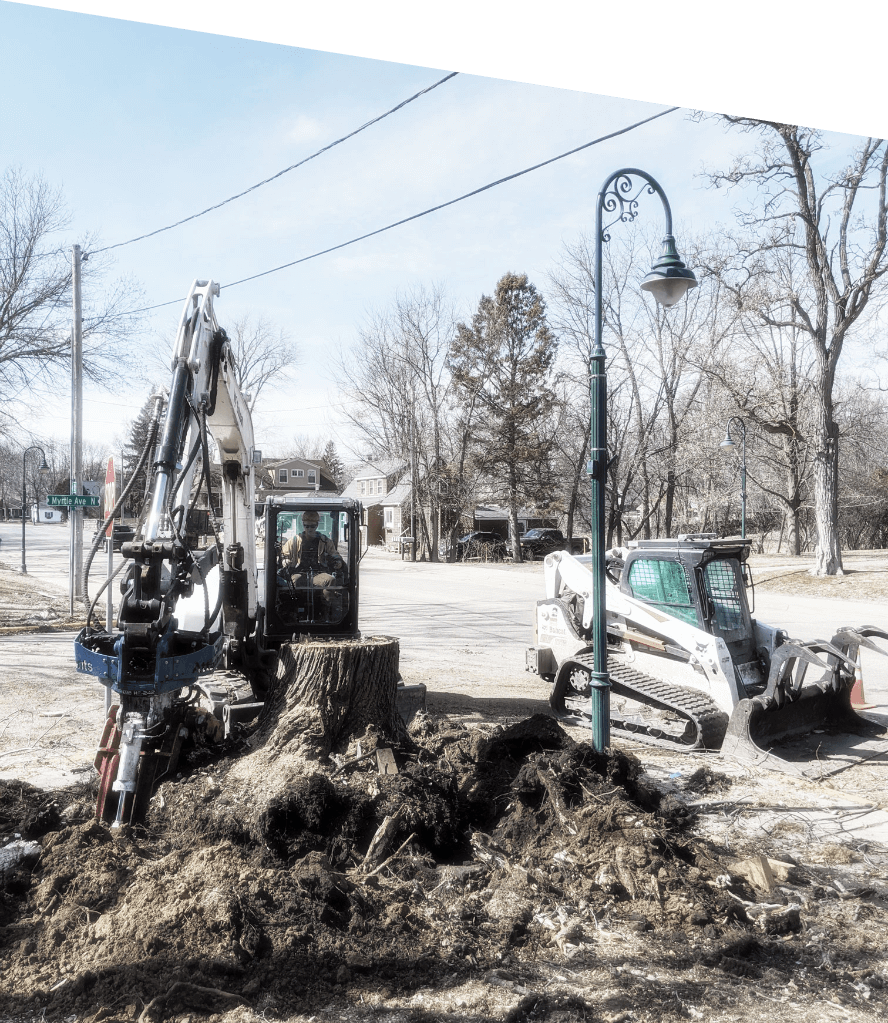 Excavator on city street removing stump after tree removal. Specializing in municipal tree services, including destumping