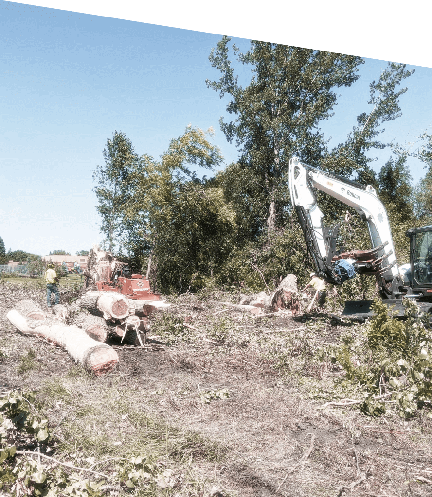 White Treestory excavator clearing vegetation & brush on jobsite. Treestory specializes in land clearing services