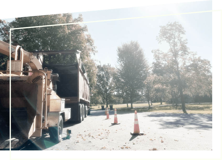View from behind the TreeStory wood chipper attached to large truck with hazard cones to the right & large trees in the back